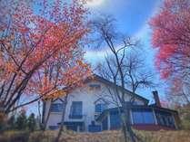 5月上旬、山桜が満開のころ。木々に囲まれた小高い丘の上にsinraはあります。