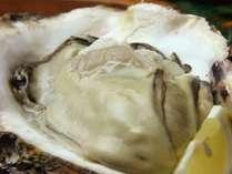 【カキ三昧】冬の味覚☆鍋のシメは雑炊で♪牡蠣料理のフルコースを味わう[1泊2食付]