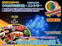 土曜限定!ウミホタル観賞会エントリー+1泊2食付スタンダード(まんぷく海鮮御膳)