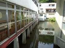 池の上に建つ、珍しい温泉旅館ですが、廊下はギシギシ、トイレは共同と大変ご迷惑をお掛け致します。