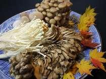 健康増進・ダイエットに最適!キノコ鍋付ヘルシープラン★鮭川村は1年中いろいろなキノコを栽培してます。