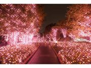 Shinjuku Terrace City ILLUMINATIONの写真1