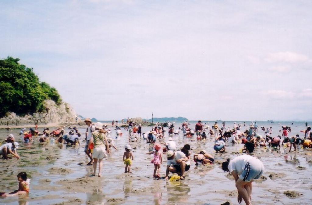 赤穂唐船サンビーチ潮干狩り場