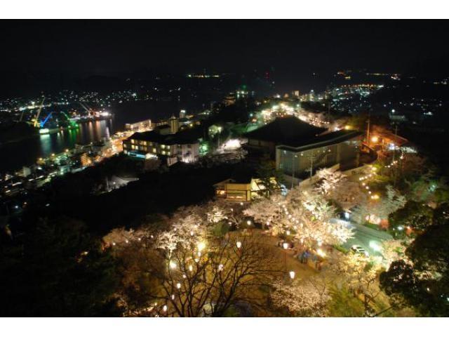 千光寺公園の桜ライトアップ