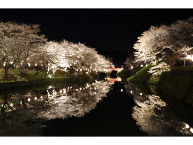 鹿野桜まつり