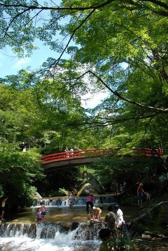 岩屋堂公園