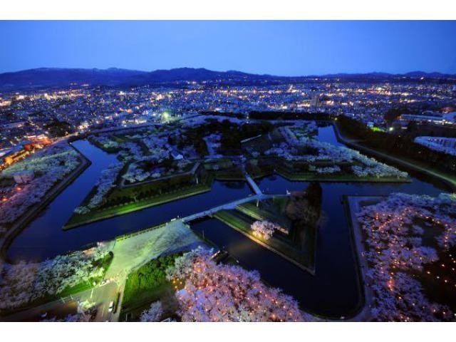 夜桜ライトアップ 五稜郭公園