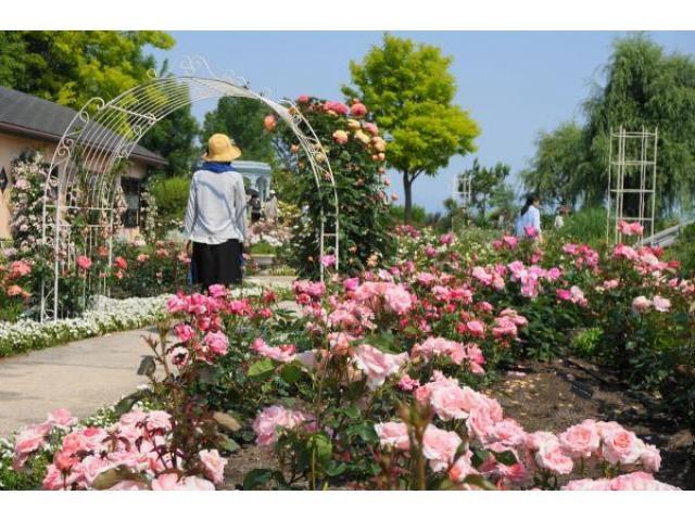 びわ湖 大津 館 イングリッシュ ガーデン