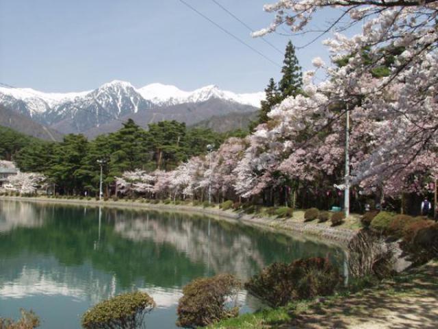 「千人塚公園 紅葉」の画像検索結果