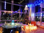 Christmas Dreams in SPACEPARK の写真1