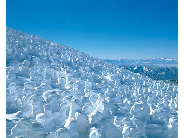蔵王樹氷まつり2020