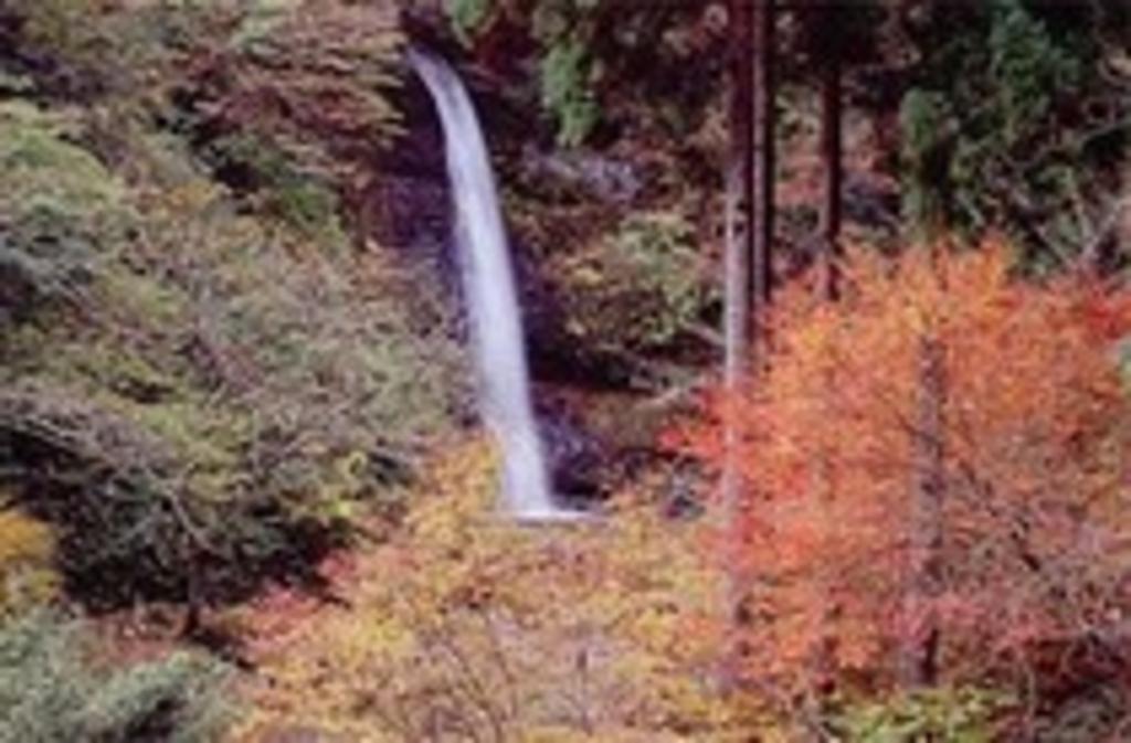 豊岡市の自然景観・絶景ランキングTOP10 - じゃらんnet