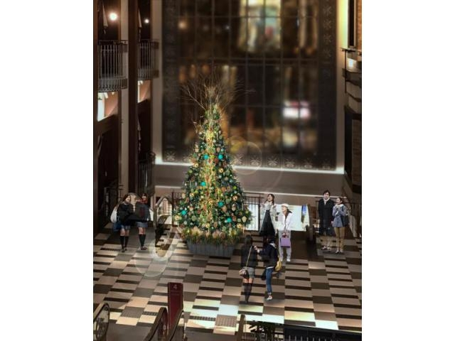 HERBIS PLAZA/PLAZA ENT Christmas Illumination