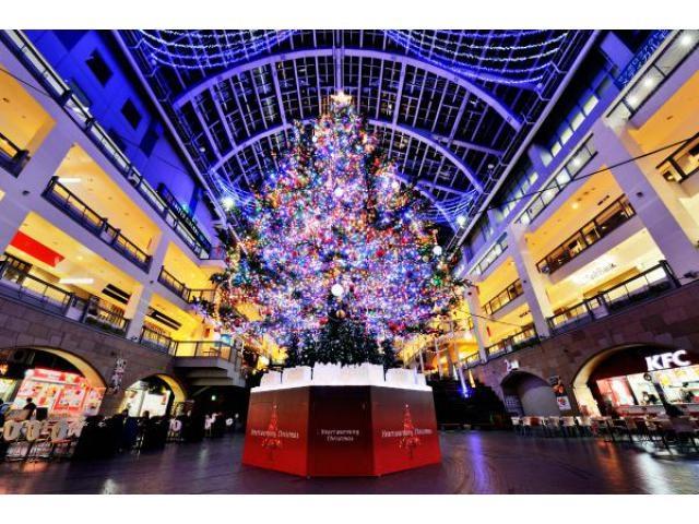 SAPPORO FACTORY CHRISTMAS 2018