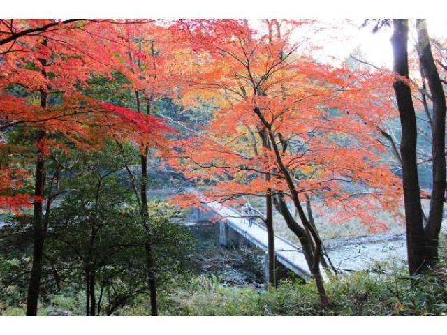【埼玉】[嵐山町]嵐山渓谷 紅葉まつり[2018/11/17-12/09] ->画像>6枚