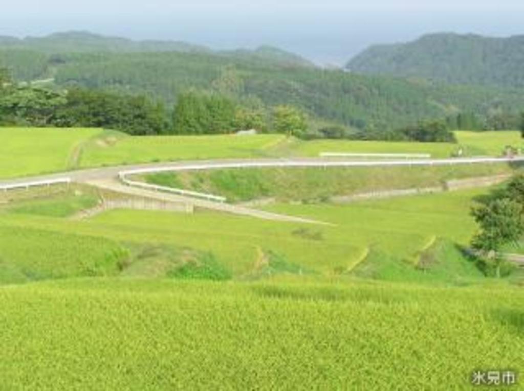 長坂の棚田