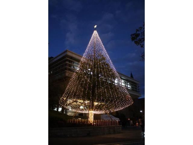 クリスマスイルミネーション(京田辺校地)