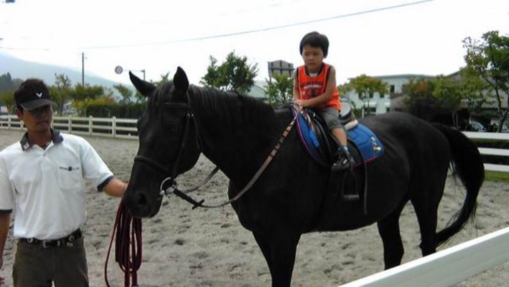 乗馬体験のプラン!