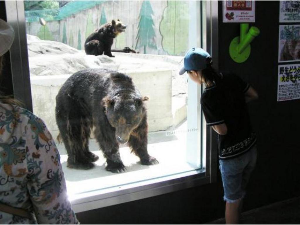 釧路市動物園 春の動物園まつり