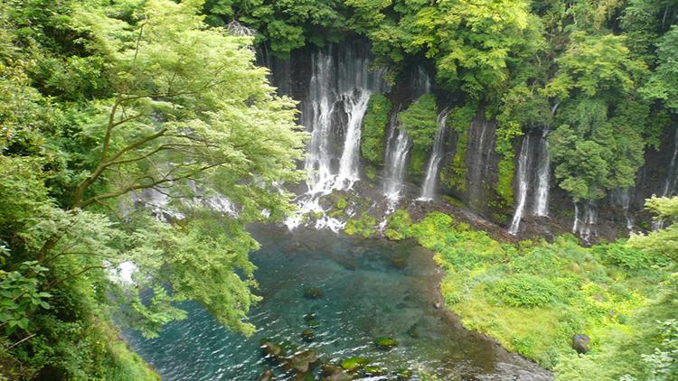 観光 静岡