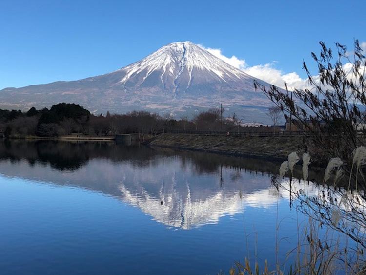 静岡・富士のドライブスポットおすすめ18選!富士山がきれいに ...