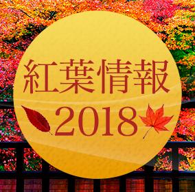 紅葉情報2018