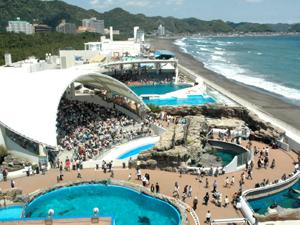 アクティブ&癒し♡千葉県には1日遊べるデートスポットがいっぱい!