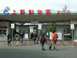 東京都恩賜上野動物園のスポット情報&周辺のホテル・宿 - じゃらんnet